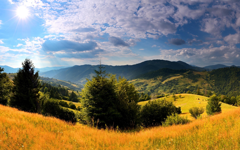 картинка природа украины летом проверили